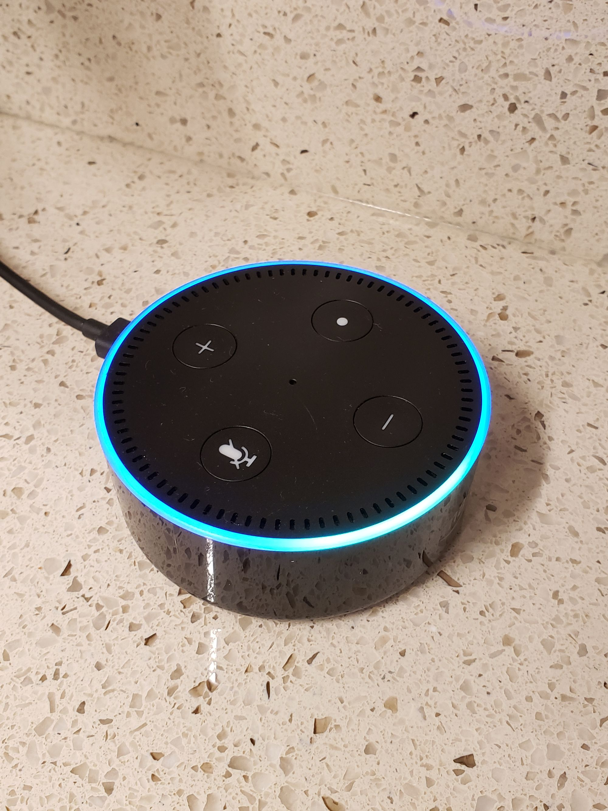 Alexa Voice Commands to Control Home Assistant